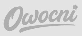 Logo firmy Owocni, która zjamuje się copywritingiem