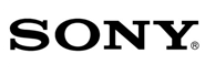Nazwa firmy propozycje na przykładzie SONY
